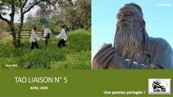 TAO LIAISON N°5-c